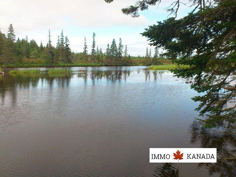 Mehr als 10 Hektar mit rd. 800 m eigener Uferfront am Lach-/Forellenfluss - Cape Breton - Nova Scotia